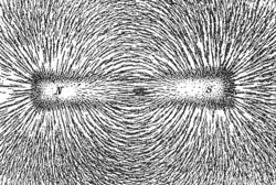 Magnetic lines of force of a bar magnet shown by iron filings on paper