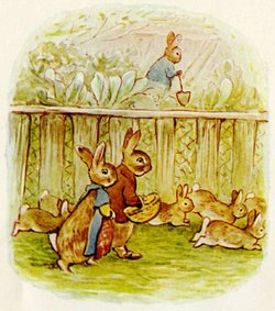 Potter's illustration of her  rabbits — in this case the married cousins, Benjamin and Flopsy Bunny, from The Tale of the Flopsy Bunnies